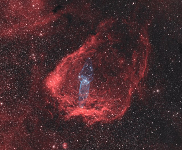 Flying Bat and Squid Nebulae